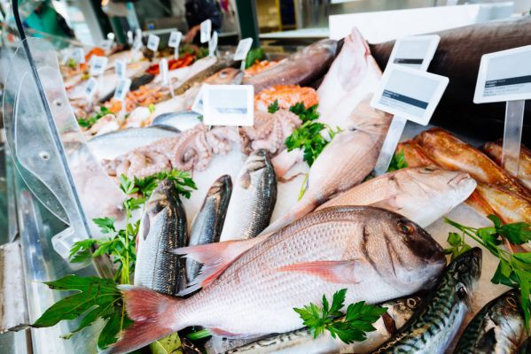 正规进口冷冻海鲜产品